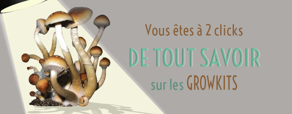 guide pour cultiver growkit